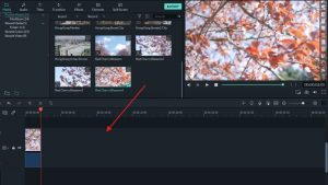 Wondershare Filmora Scrn Crack 10.2.0.31+ Registration Code (Torrent) Download 202